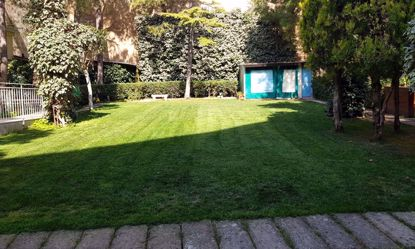 Imagem de Jardim